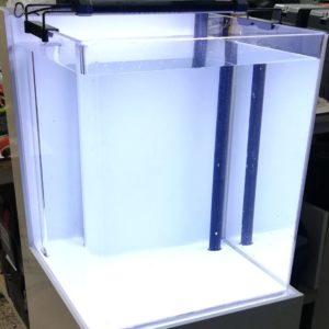 Aquarium acrylique
