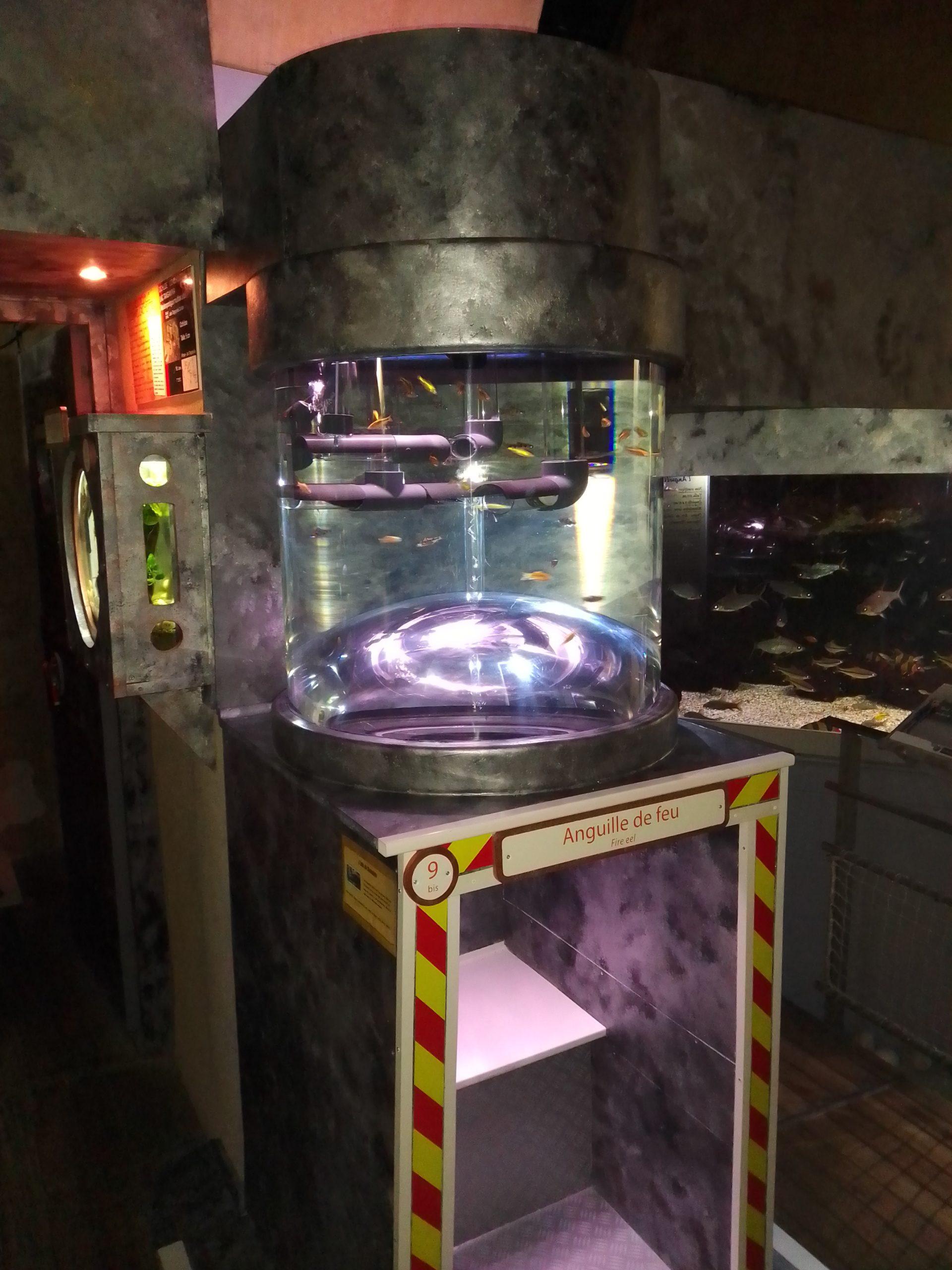 Tube aquarium sur mesure avec demi sphère